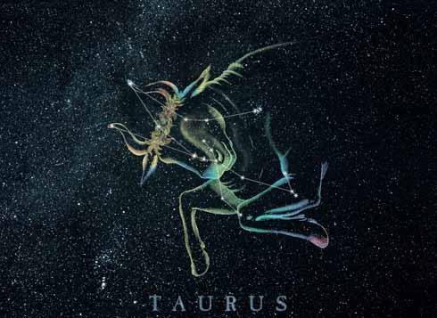 TaurusBull.jpg